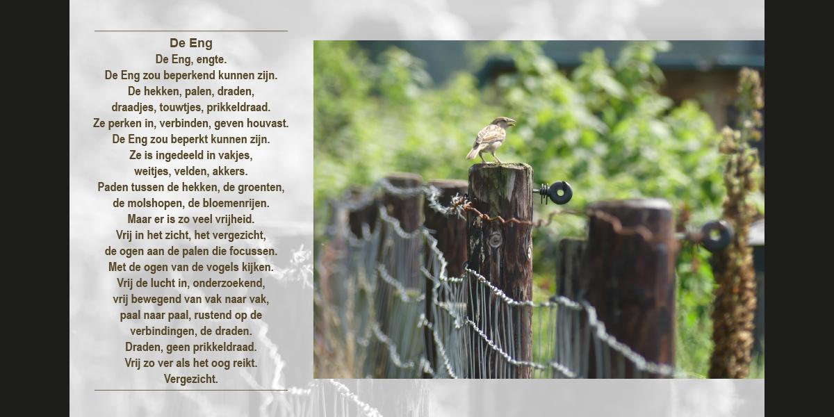 boekje4zwissuulos_04-05_1200