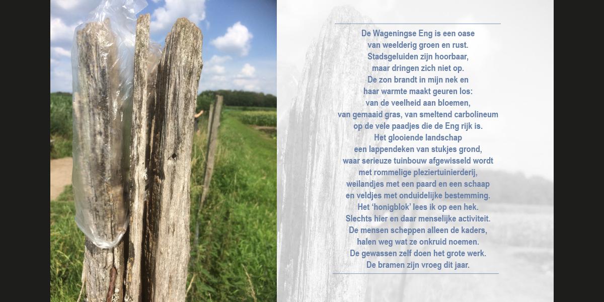 boekje4zwissuulos_08-09_1200